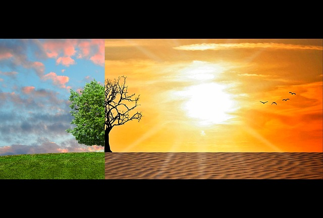 climate-change-2063240_640.jpg