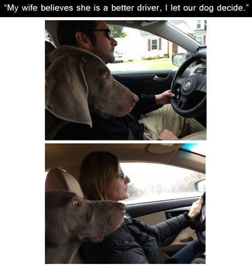 Egy kezdő sofőr vallomása, avagy kell-e T betű a kocsira