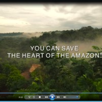Tragédia a biodiverzitás és az őslakosok számára