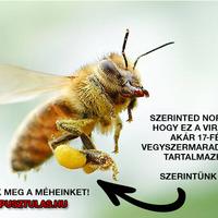 Mi a méhek terhe?