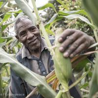 Ez lehet Afrika újragyarmatosítása (1. rész)