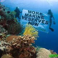 Adjuk vissza az életet az óceánoknak, amit tőlük kaptuk