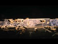Kik poroznak jobban: az emberek vagy a méhek?!