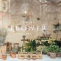 Valami vad, valami virágos, valami új - Interjú a Wild Flower Bar csapatával