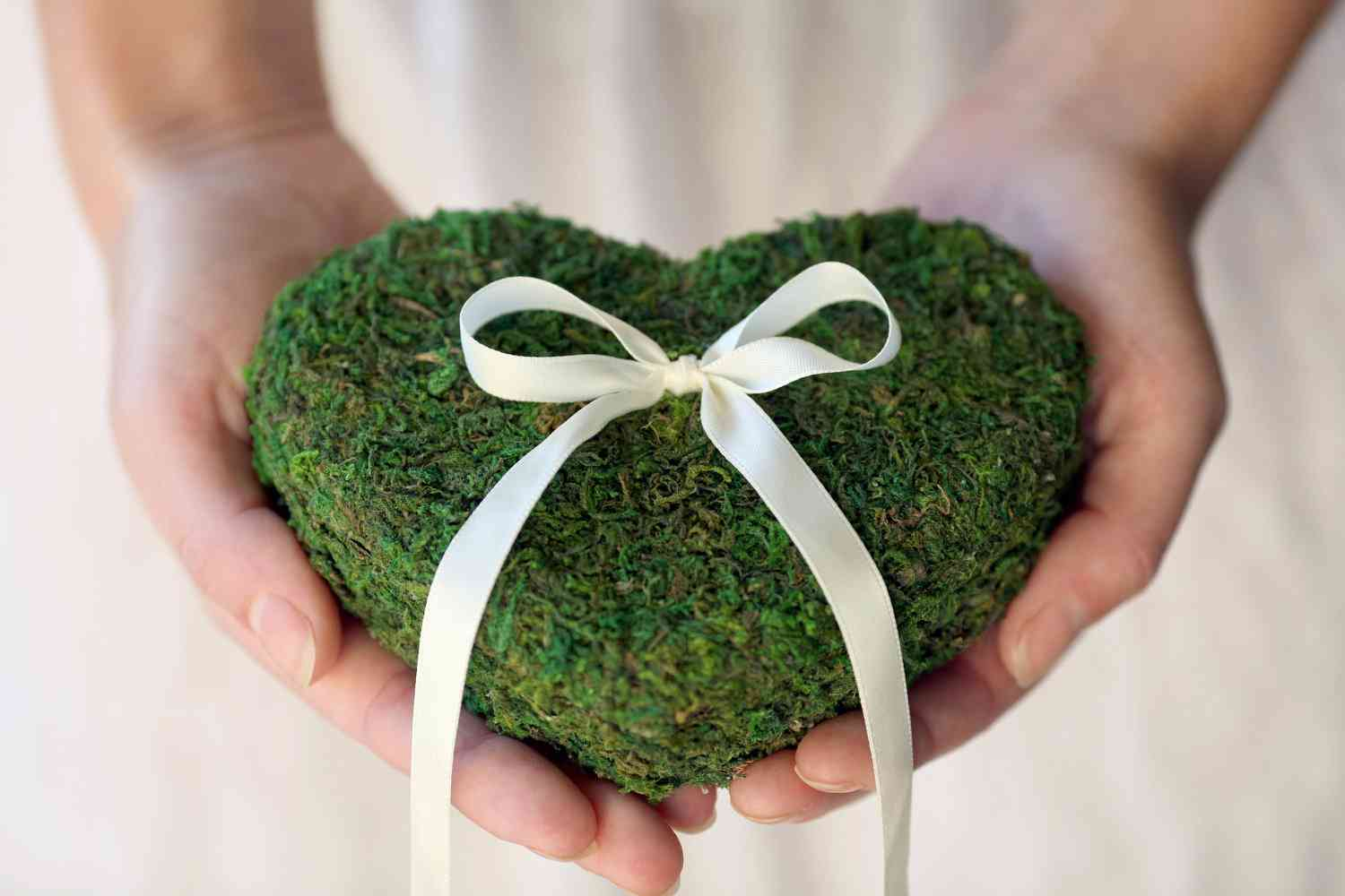 memorable-moss-wedding-decor-for-ceremony-reception-ring-bearer-pillow_original.jpeg