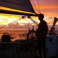 Élőben követhető tengeri expedíció