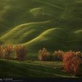 A nap (háttér)képe: zöld tér