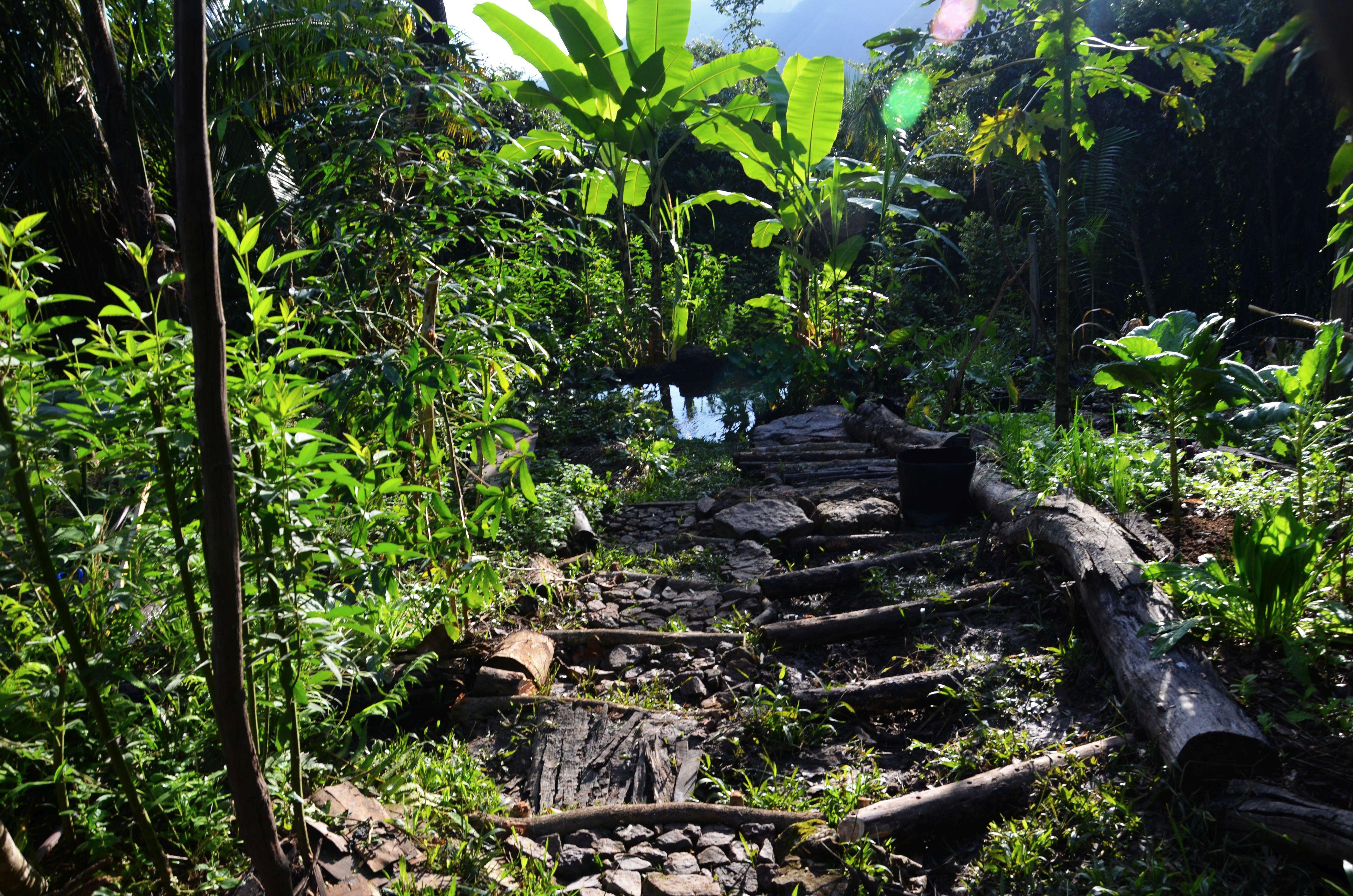 Megépített lépcsők az első kertben