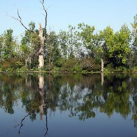 WONDERFULL WATER WORLD- THE LAKE-TISZA