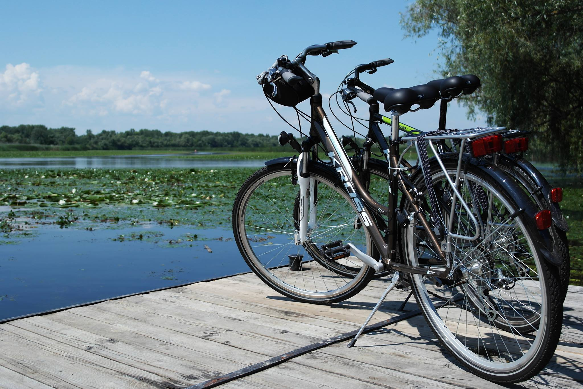 bicajok_a_parton_balan_attila.jpg