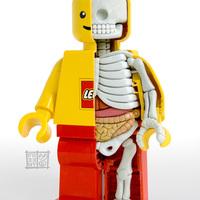 A minifig anatómiája