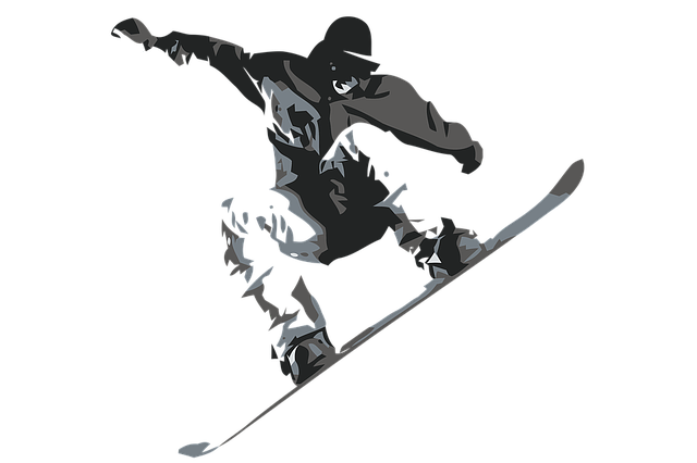 snow-boarder-1335696_640.png