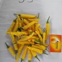Újabb termések