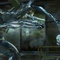 Habibárpult E3 díjak 2010 második rész