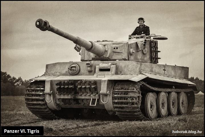panzervi.jpg