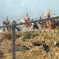 Magyarország: a drótkerítéssel körbezárt antropológiai kísérlet