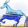 A liberális és a progresszív hozzáállás messze nem ugyanaz