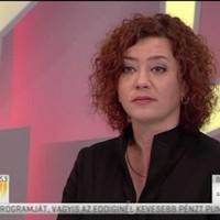 Vadai: Nem az ügyteher miatt helyezték ide-oda a pereket
