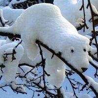 Viszlát tél