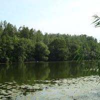Duna holtág