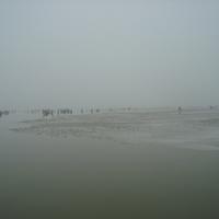 Biztonságban telel a Tisza-tó
