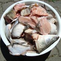 Balatoni halászlé