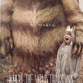 Ahol a vadak várnak (Where the Wild Things Are)