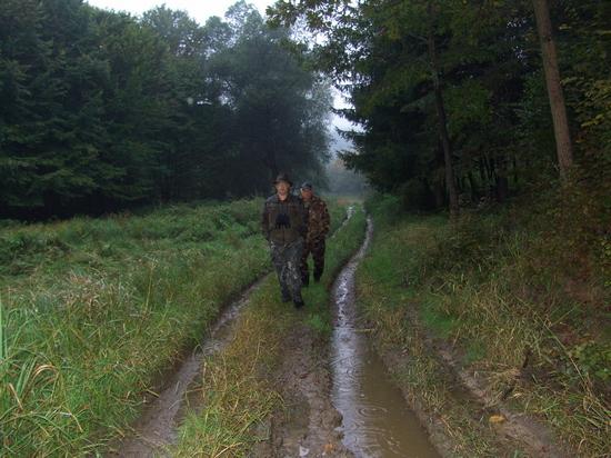 Hangonyi séta