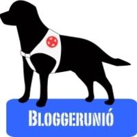 Elindult a bloggerunió
