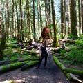 Tíz jó dolog Vancouverben