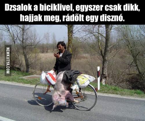 460-111703-dzsalok-a-biciklivel.jpg