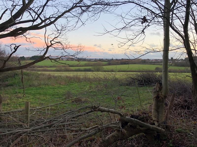 woodlands_farm.jpg