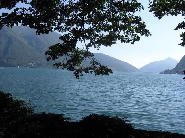 tó.jpg