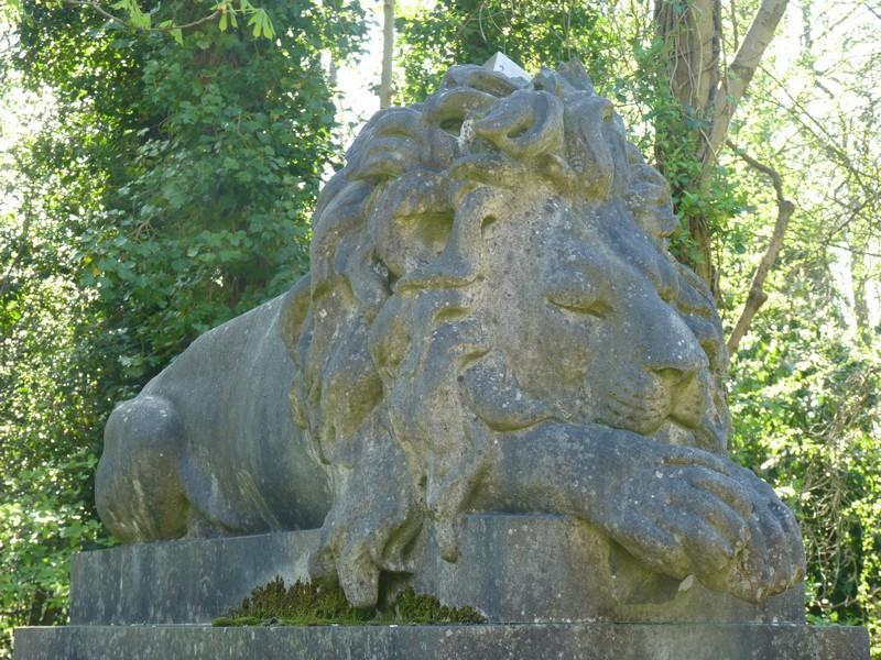 Nero, az oroszlán