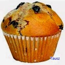 muffin15.jpg