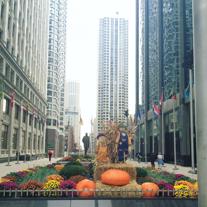 Chicago mindig az aktuális évszaknak megfelelően borul virágba és díszbe. Ez a kép tavaly Halloweenkor készült. - (Fotó: Hegyes Dóra)