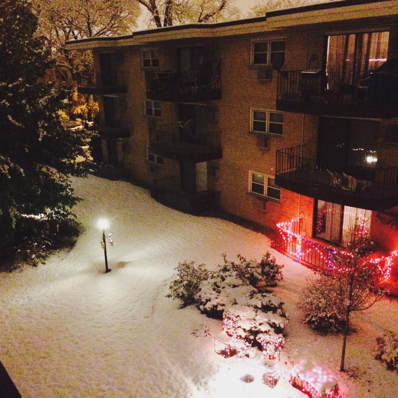 A chicagói tél hosszú és nagyon hideg. Nem ritka hogy március végén, április elején havazik majd a rövid tavaszt meleg nyár követi. - (Fotó: Hegyes Dóra)