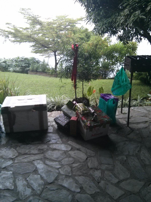 Helyi karácsonyfa (Goma, Kongói DK)