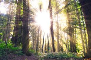 Gyűjtsd a napfényt túrázással!