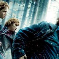 2010: Legjobb filmzenék