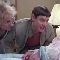 Film: Dumb és Dumber kettyó - Dumb And Dumber To (2014)