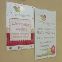 Egy sikertörténet Erdélyből: a Székelygyümölcs Gyümölcsfeldolgozó Manufaktúra