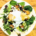 Mennyei ízharmóniák ebédre