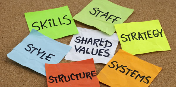 7s_organizational-culture.jpg