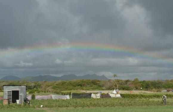 rainbow_mauritius.JPG