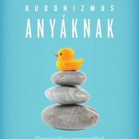 Sarah Napthali: Buddhizmus Anyáknak