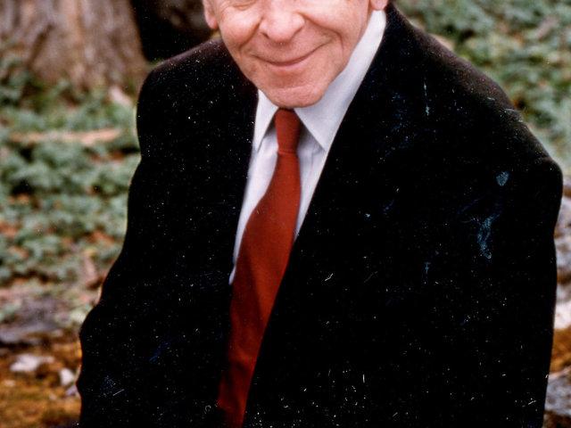 Vas József Pál: A pszichoterápia meghatározása - esszé