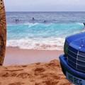 Bálna Merci vetődött partra Hawaiin