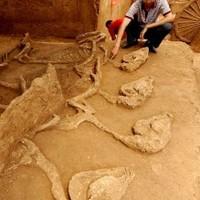 Avatar-korabeli sírt találtak Nagykállónál