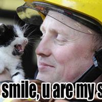 Tüzelő macskát oltottak budapesti tűzoltók